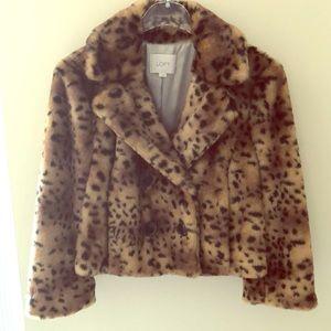 LOFT Ann Taylor Cropped Cheetah Jacket